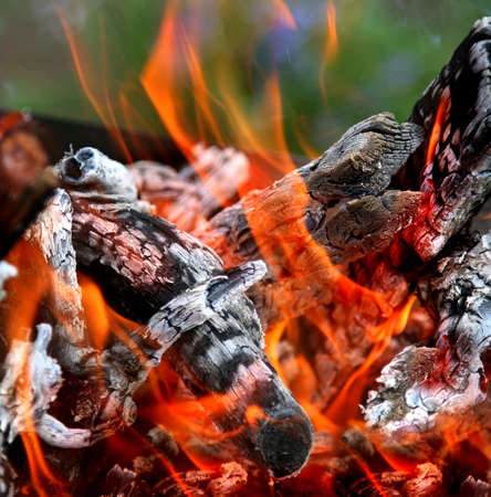 Fire and logs for barbecue