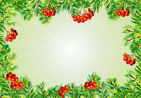 Christmas frame with berry and evergreen Vector
