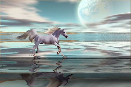 sea horse: DESTINY