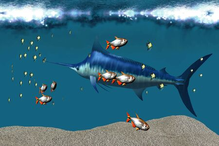 Small fish accompany a blue marlin in an ocean world habitat. photo