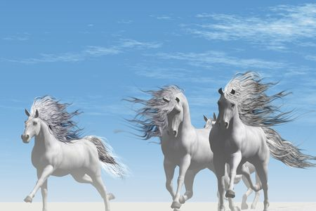 A herd of ghostly white horses gallop together in the wilderness.