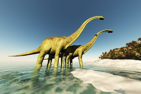 wade: Two Diplodocus dinosaurs wade through shallow waters to get to the vegetation on this island.