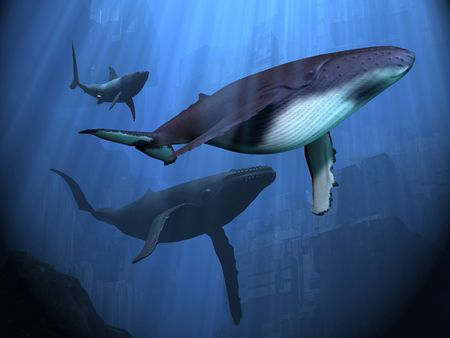 blue whale: Two Humpback whales and a shark swim among ancient city ruins.