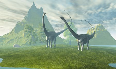 Two Diplodocus dinosaurs walk together in the afternoon in the prehistoric age. Stock Photo