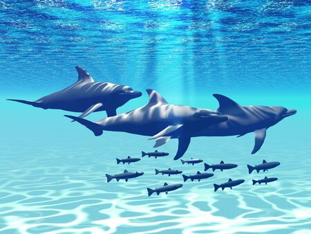 Three Bottlenose Dolphins swim with a group of reef fish. photo