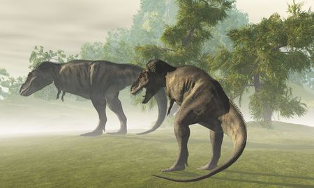 Two Tyrannosaurus Rex dinosaurs rest in the early morning light before the days hunt. Stock Photo