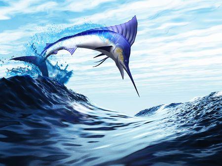 pez espada: Salto - un hermoso marlin azul irrumpe a través de una onda en un salto espectacular.