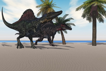 SPINOSAURUS WALKING - Two Spinosaurus dinosaurs amble down a beach looking for food.