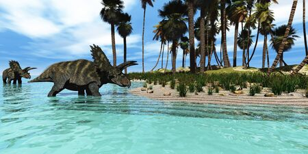 cretaceous: Coahuilaceratops - Two Coahuilaceratops dinosaurs wade through tropical waters to reach new vegetation in prehistoric times.