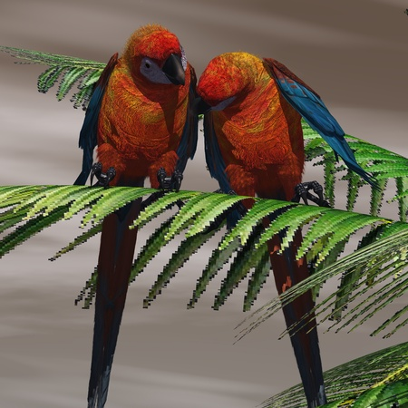 bipedal: Parrot Tree - Two Cuban Red Macaws have a close bond and are tender with each other.
