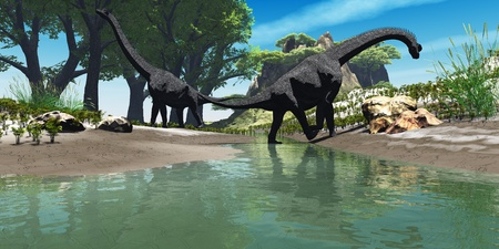 Brachiosaurus Dinosaurus - Two titanic Brachiosaurus dinosaurs look for food along the banks of a stream. photo
