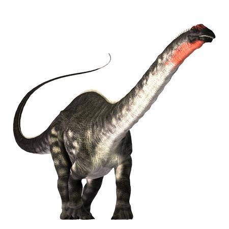Apatasaurus 01 - el dinosaurio Apatasaurus era un herb�voro de la Era Jur�sica. Este gigante tambi�n llamado brontosaurio, explorar las copas de �rboles tanto como una jirafa hace hoy. Sus f�siles han sido encontrados en Am�rica del Norte. Foto de archivo - 10677120