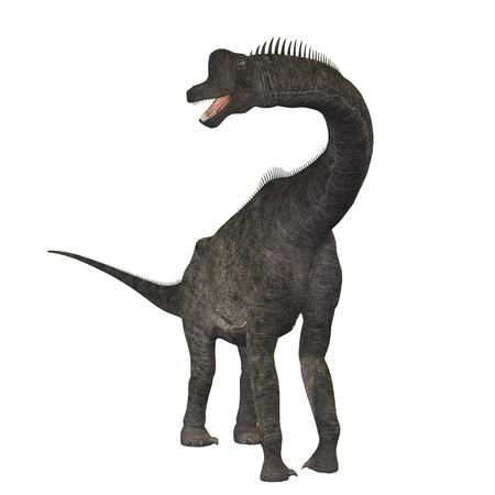 sauropod: Braquiosaurio 01 - el braquiosaurio dinosaurio era un saur�podo del per�odo Jur�sico. Sus brazos eran mucho m�s largos y luego sus miembros traseros, d�ndole el aspecto de la jirafa moderna. Este herb�voro explorar las copas de los �rboles en Am�rica del Norte.