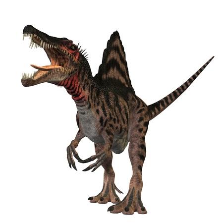 dann: Der Spinosaurus Dinosaurier war ein riesiger Fleischfresser der Kreidezeit von Erden Geschichte. Es war gr��er als Tyrannosaurus Rex und Giganotosaurus. Seine Fossilien wurden in Nordafrika gefunden. Die einzige bekannte Fossilien Knochen dieses Dinosauriers wurden in zerst�rten