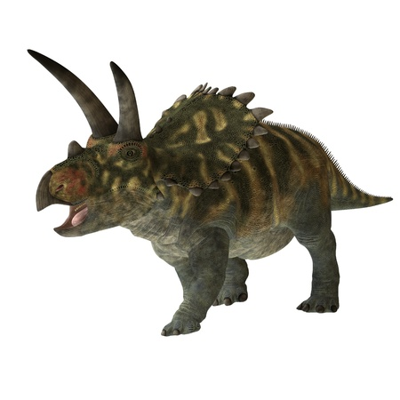 Coahuilaceratops 01 - The Coahuilaceratops dinosaur was a herbivore that lived in the Cretaceous Period of Earths history. Its fossils have been found in northern Mexico.