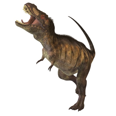 triassic: Tyrannosaurus Rex 02 -  This dinosuar was one of the largest carnivores of the Cretaceous Period of Earths history. Its fossils have been found in western North America. Its name means Tyrant Lizard King. Stock Photo