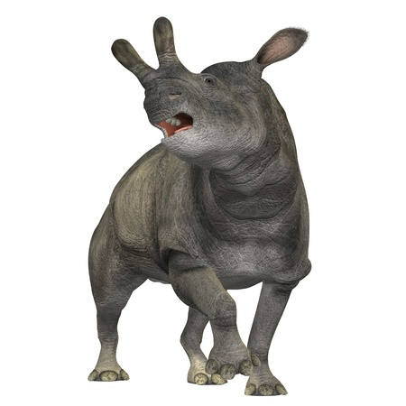 Brontotherium 01 - The Brontotherium was a rhinocerous-like mammal which was a herbivore and is now extinct. It roamed North America in the Early Oligocene and is related to the horse. Stock Photo - 10755825