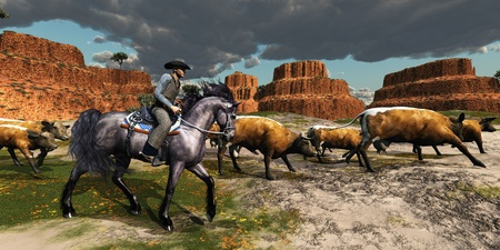 Cowboy 01 - A wrangler and his beautiful black horse bring a herd of cattle back to the ranch. photo