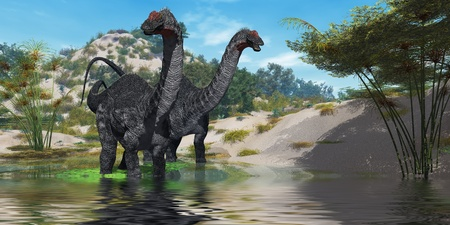 Apatasaurus 02 - Two Apatasaurus dinosaur wade through a lush pond looking for plants to eat