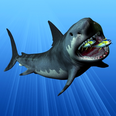 powerful: Megalodon - The Megalodon was the most powerful predator in the seas of the Cenozoic Era of Earth