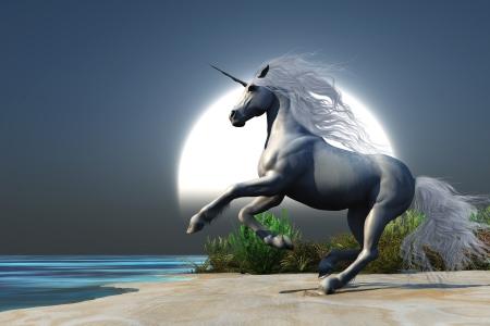 Midnight Unicorn - un magico unicorno bianco esibisce su una spiaggia al momento della luna piena che sorge Archivio Fotografico