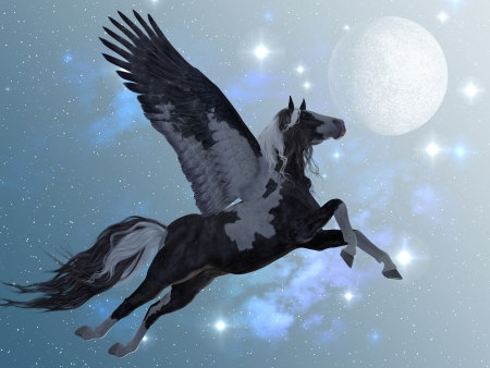 Pegasus 03 - A beautiful black and white Pegasus flies up into the sky on long feathered wings