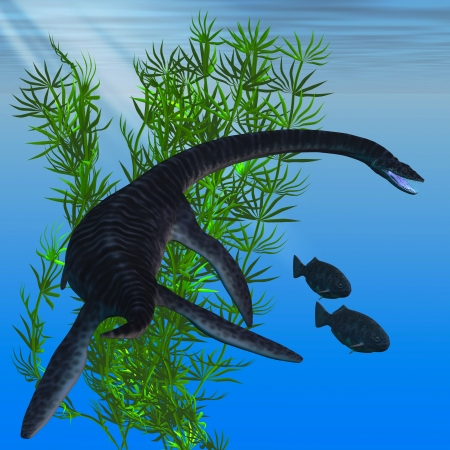 behemoth: Plesiosaurus - A Plesiosarus dinosaur turns to go after two Dapedius fish from the Jurassic Era
