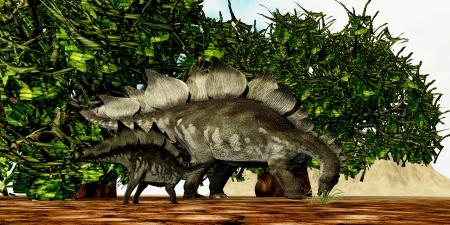 stegosaurus: Stegosaurus 03 - Un bebé Stegosaurus mira a su madre para encontrar el follaje de la mejor alimentación