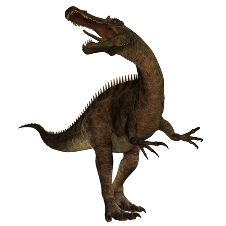 Suchomimus 01 - Suchomimus was a large Spinosaurid dinosaur with a crocodile-like set of jaws  It lived 110 to 120 million years ago in the Cretaceous period in Africa, when it was a lush swampy habitat Stock Photo - 14562013