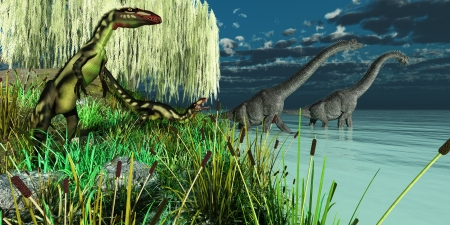 wade: Brachiosaurus and Dilong Dinosaurs - Small Dilong dinosaurs watch as two Brachiosaurus dinosaurs wade across a lake  Stock Photo
