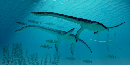 behemoth: Plesiosaurus Migration - Three Plesiosaurus dinosaurs migrate along with a school of fish to warmer Jurassic seas