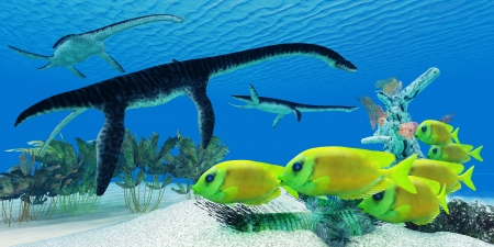 Plesiosaurus Coral Reef - A school of Lemonpeel Angelfish keep a wary eye on three large predatory Plesiosaurus dinosaurs  photo