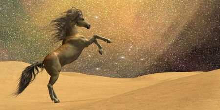Wilderness Horse - A stallion rears in a desert underneath a night sky full of stars