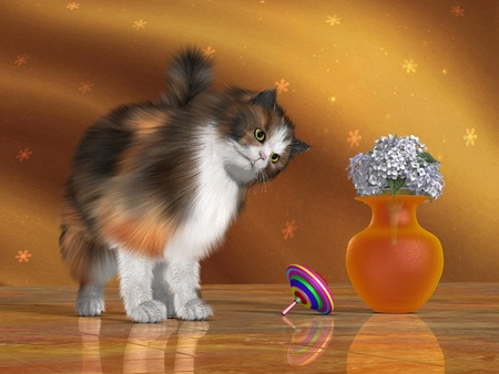 calico cat: Bella the House Cat - Bella, a calico cat, looks at a spinning top with a quizzical expression on her face