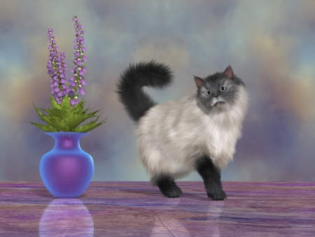 Max the House Cat - Max, the Blue Siamese cat, walks by a blue purple vase full of beautiful flowers  Stock Photo