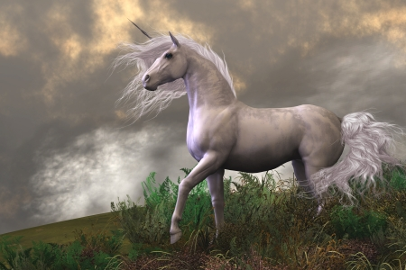 horses in the wild: White Unicorn Stallion - Clouds and mist surround a beautiful unicorn stallion with a white coat