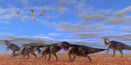 migrate: Parasaurolophus Desert - A herd of Parasaurolophus dinosaurs migrate through a desert searching for better vegetation  Stock Photo