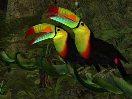 Toucan Jungle - Two Toucan birds perch together on a jungle vine in the tropics  photo