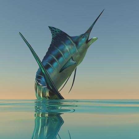 황새치: 마린 스포츠 물고기 - 블루 말린 많은 스포츠 어부들에 의해 자행 아름다운 육식 물고기입니다 스톡 사진