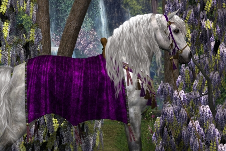 bridle: Arabian and Wisteria - Portrait of a white Arabian stallion in fancy saddle and bridle with purple Wisteria flowers in the background.. Stock Photo