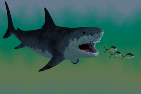 Megalodon Shark Attack - Several Tuna fish try to escape from a huge Megalodon shark in prehistoric times. Stock Photo - 20366200