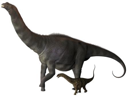 sauropod: Argentinosaurus y juvenil Perfil - Argentinosaurus era un dinosaurio saur�podo titanosaurio de la �poca del Cret�cico en Argentina Foto de archivo