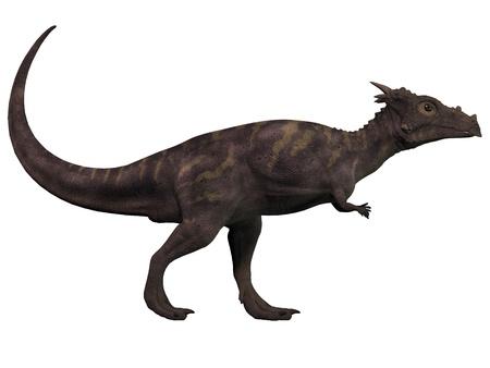 ホワイト - 名前付きのホグワーツ魔法魔術学校のドラゴンは草食動物、白亜紀の時代の Dracorex に Dracorex 写真素材
