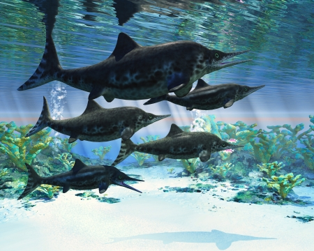 mesozoic: Ichthyosaur - Ichthyosaurs were giant marine reptiles that were a carnivore in the Mesozoic era