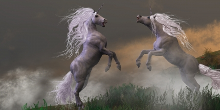 steed: Unicorn Stallions Fighting - Lost in mountain foggy mist two unicorn bucks fight for dominance  Stock Photo