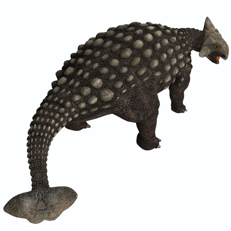 behemoth: Ankylosaurus Isolated - A huge armored dinosaur, Ankylosaurus was a herbivore from the Cretaceous Era  Stock Photo