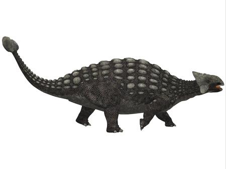 dinosaur: Ankylosaurus en blanco - Un enorme dinosaurio acorazado, Ankylosaurus era un herb�voro de la Era del Cret�cico