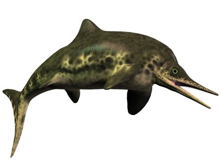 Stenopterygius Icthyosaur on White - Stenopterygius was an Icthyosaur from the Jurassic Period and was very much like today Stock Photo - 21763384