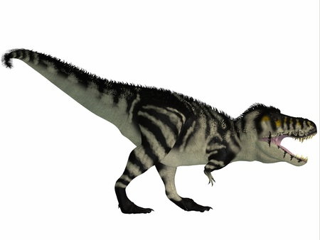 T-Rex Black and White - Tyrannosaurus Rex lived in North America in the Cretaceous Period and was an intimidating predator