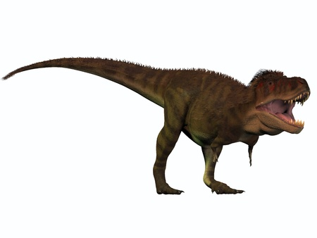 intimidating: T-Rex Titan - Tyrannosaurus Rex lived in North America in the Cretaceous Period and was an intimidating predator